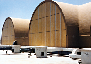 roof-oman-intercontinental hotel1.png