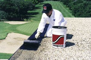 Swepco Heavy Duty Patching Compound Southwestern